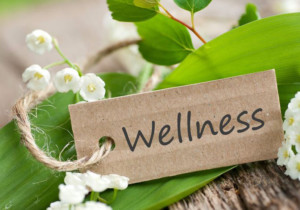Ayurveda – the Magic of Living Wisely