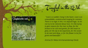 Tangled in the Web by Marisse Lee