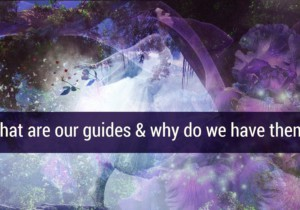 What are our Guides and Why do we have them? by Glynis Brits