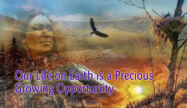 Our Life on Earth is a Precious Growing Opportunity by Glynis Brits