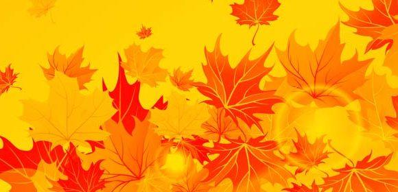 Leaf Article Collette